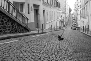 montmartre_web