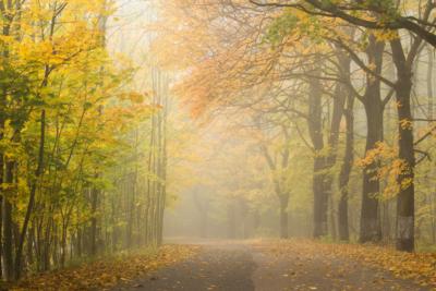 podzimni-silnice-ii_web